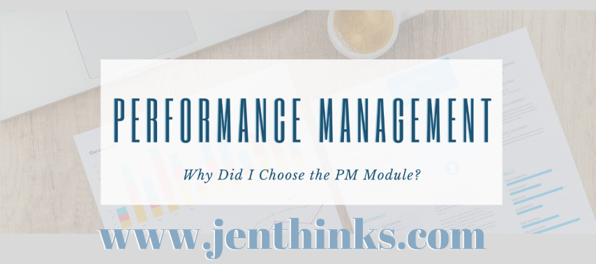 CPA PERFORMANCE MANAGEMENT